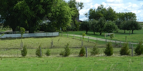 Managing Trees on your Property Workshop 2020 tickets