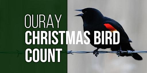 Ouray Christmas Bird Count