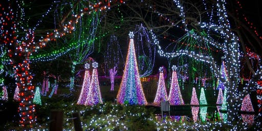 Photowalk: Columbus Zoo Lights