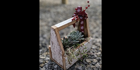 Sips & Succulents at Springfield Manor 12/14 tickets