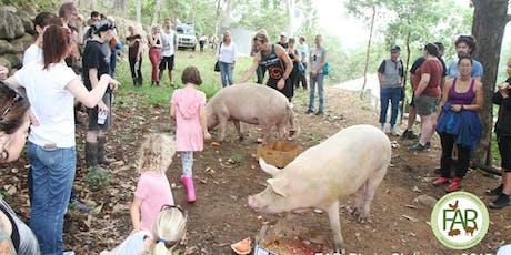 Piggy Christmas 15/12/19 tickets