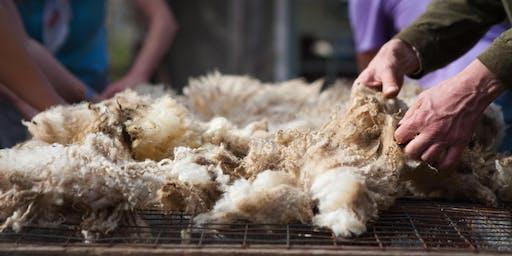 Fleece to Garment Series