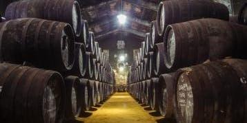 REFLEJOS DE AGUILAR, Cata de vinos DOP Montilla Moriles. Bodegas Toro Albalá