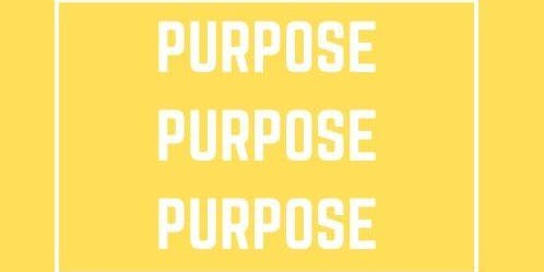 OFNC Leeds Branch 18-30s: Purpose 2019