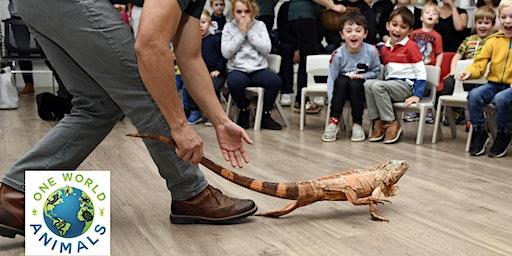 Amazing Animals 11am  Colnbrook