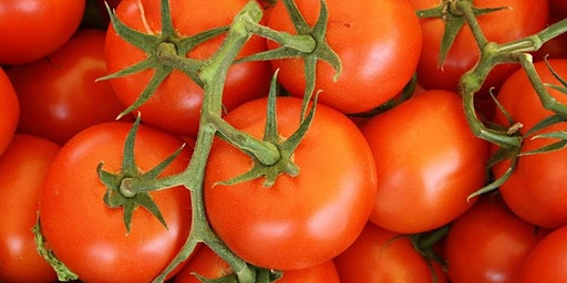 Garden Smarter: New, Improved, Tomato Lecture
