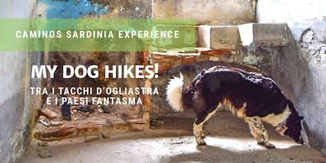 Dog hiking! Passeggiata a sei zampe sui Tacchi d'Ogliastra e Gairo vecchio. biglietti