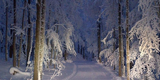 Sold Out  Jan 18  Candlelight  Snowshoe - New Date Feb 28