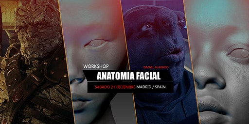 FACIAL ANATOMY WORKSHOP