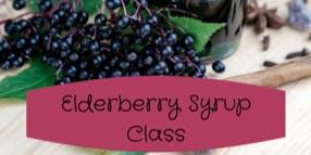 Elderberry Syrup Class