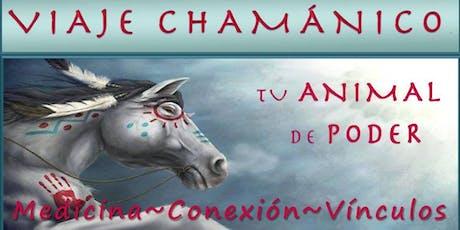 Viaje Chamánico; Tu Animal de Poder, Medicina y Vínculos entradas