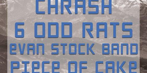 Chrash, 6 Odd Rats, Evan Stock Band and Piece of Cake