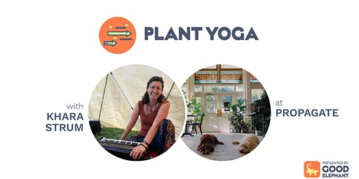 Plant Yoga at Propagate
