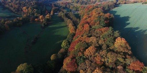 Seasonal & Tree Folklore Walk
