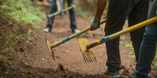 Tuesday Trails Work Party, November 19th