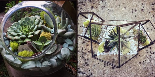 Holiday Succulent Terrarium Workshop with Crystal Floyd at CoRK Arts District