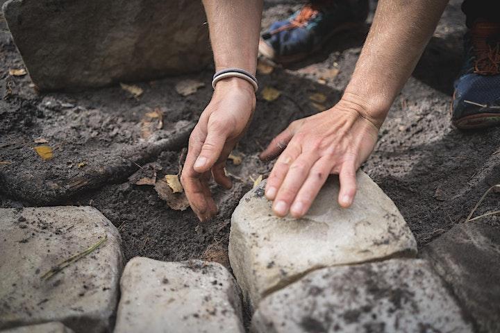 Image pour Atelier anti-érosion en Forêt de Fontainebleau avec l'ONF   Isatis