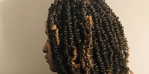 Two Strand & Passion Twist Training