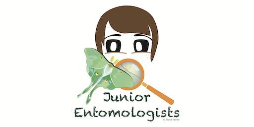 Junior Entomologists 2020