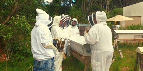 Beekeeping Course Auckland…Intro to Beehive Management for Beeginuzz tickets