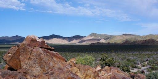 Ecology of Joshua Tree National Park Spring 2020 (Biology X412.4, 2 units)