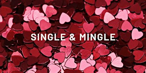 Single & Mingle Night