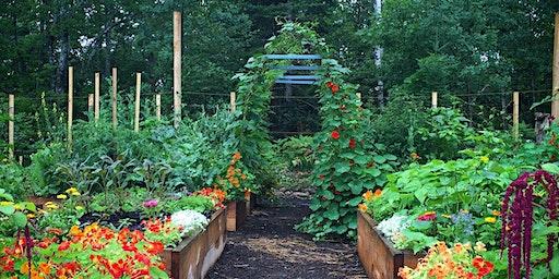Veggie Garden Remix with Niki Jabbour