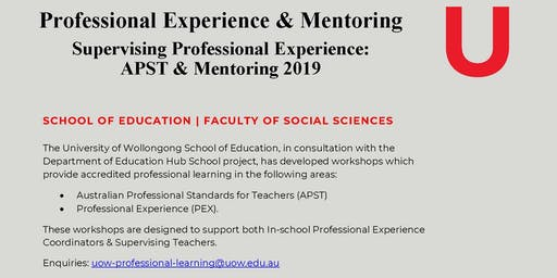 Professional Experience & Mentoring Workshop 2019