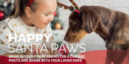 Santa Paws Holiday Pet Photography