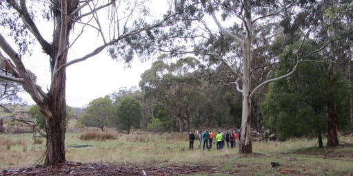 Managing Riparian Weeds Workshop
