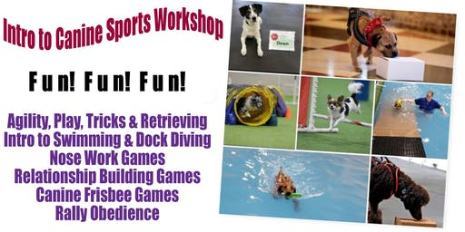 Intro to Canine Sports Workshop - Sat. January 4