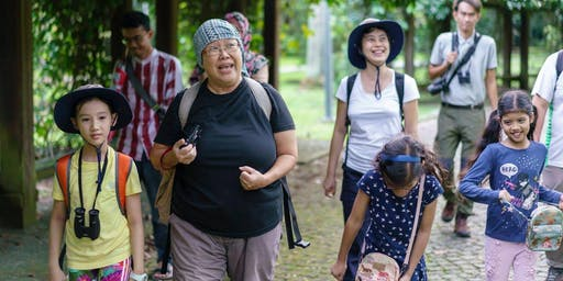23 Nov (Sat) - Free guided walk at Pasir Ris Mangroves