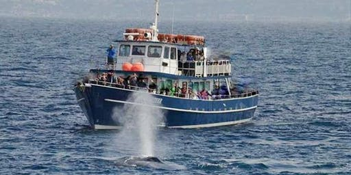 Whale Watching with EBE Club