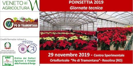 POINSETTIA 2019 - Giornata tecnica biglietti