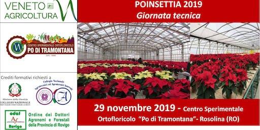 POINSETTIA 2019 - Giornata tecnica