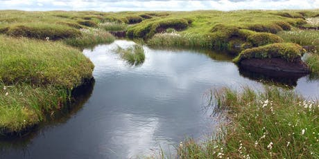 Introduction to Rewetting the Moorland Environment tickets