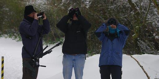 Kickstart your Birding 2020 at RSPB Titchwell Marsh