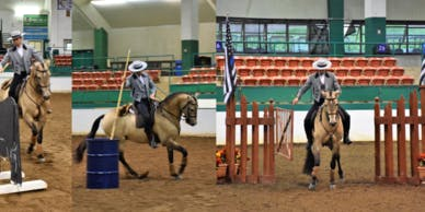 Working Equitation Clinic - Beginner to Advanced