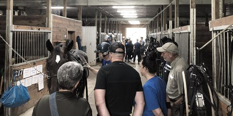 TheStable.ca Guided Tours (during the 2019 Christmas Open House) tickets