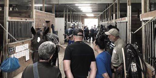 TheStable.ca Guided Tours (during the 2019 Christmas Open House)