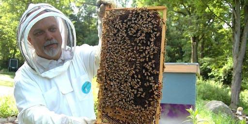 Conditions de travail d'apiculteur