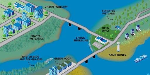 NOAA Workshop: Nature-Based Solutions for Coastal Hazards