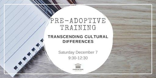 Transcending Cultural Differences December 7