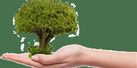 Micro épargne, une innovation utile ? billets