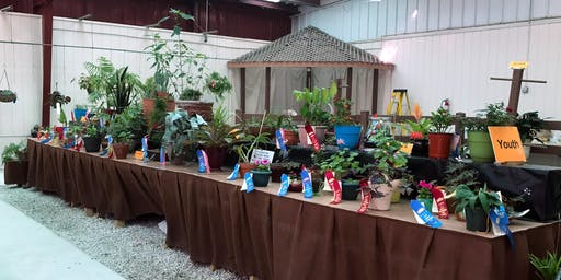 Preparing Plants for the Clay County Fair- 4-H/Youth Event
