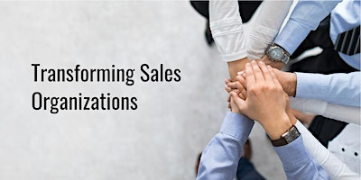 INDIVIDUAL SALES PROBLEM-SOLVING COACHING SESSION