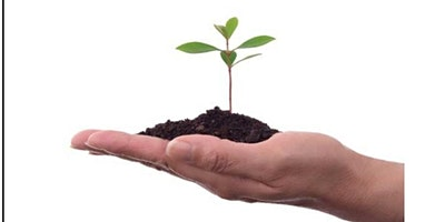 Growing a Thriving Practice