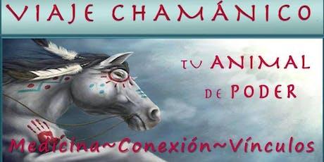 Viaje Chamánico; Tu Animal de Poder: Medicina~Conexión~Vículos entradas