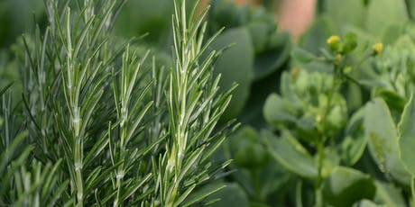 Garden Smarter: Herb Workshop tickets