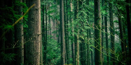 Garden Smarter:The Hidden Lives of Trees tickets